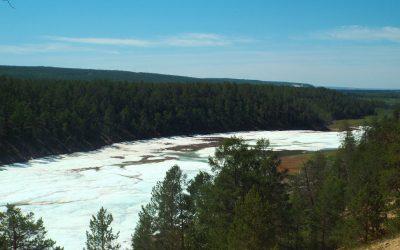 Diario de Siberia III: excursión al glaciar Buluus, taiga y chapuzón en Kuruluur
